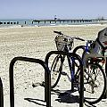 Bicycle On The North Shore-chicago by David Allen Pierson