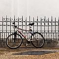 Bicycle by Roni Chastain