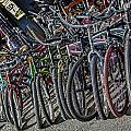 Bicycles For Rent by Camille Lopez
