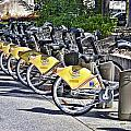 Bicycles by Phillip J Gordon