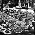 Bicycles - Velib Station - Paris by Nikolyn McDonald
