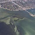 Bidr's Eye View Of Beautiful Miami Beachfront by Angela Stanton