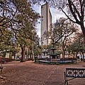 Bienville Spring With Benches by Michael Thomas