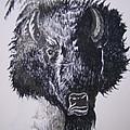 Big Bad Buffalo by Leslie Manley
