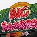 Big Bamboo by Alec Drake