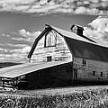 Big Barn Near Ellensburg Washington 2 by Cathy Anderson