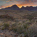 The Window View Of Big Bend National Park At Sunrise by Rob Greebon