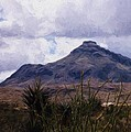 Big Bend National Park by Shannon Story