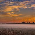 Big Break Ground Fog by Marc Crumpler