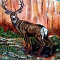 Big Buck by Joan Mace