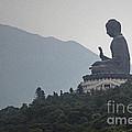 Big Buddha In Hong Kong by Lars Ruecker