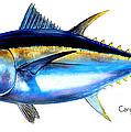 Big Eye Tuna by Carey Chen