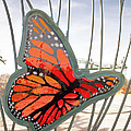 Big Glass Butterfly In Flight by Daniel Benatar G