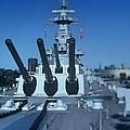 Big Guns by Rodney Lee Williams