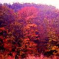 Big Hill Autumn by George Ferrell