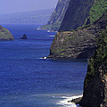 Big Island Cliffs  by Jennifer Bright