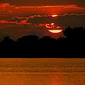 Big Orange by Karen Wiles
