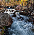 Big Pine Creek by Cat Connor