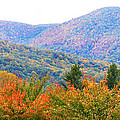 Big Pisgah Mountain In The Fall by Duane McCullough