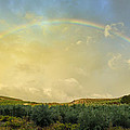 Big Rainbow by Guido Montanes Castillo