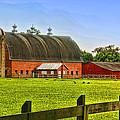 Big Red Barn  by Ola Allen