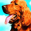 Big Red - Irish Setter Dog Art By Sharon Cummings by Sharon Cummings