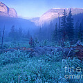 Bob Marshall Wilderness by Randy Beacham