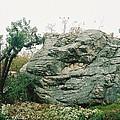 Big Rock by Mark Kastelein