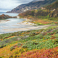 Big Sur California In Autumn by Pierre Leclerc Photography