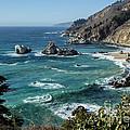 Big Sur Coast From Julia Pfeiffer Burns by Suzanne Luft