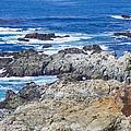 Big Sur Coastline by Priya Ghose