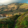 Big Sur Trail At Soberanes Point by Charlene Mitchell