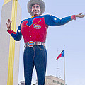 Big Tex And The Cotton Bowl  by David and Carol Kelly