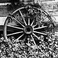 Big Wheel Bw by Mel Steinhauer