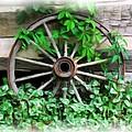 Big Wheel by Mel Steinhauer