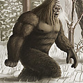 Bigfoot by Spencer Sutton