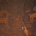 Bighorn Sheep Petroglyph Zion National Park by Susan Rovira