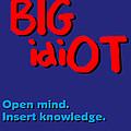 Bigidiot by Social Justice Ink