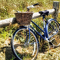 Bike At Nantucket Beach by Tammy Wetzel