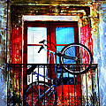 Bike In The Balcony by Hal Halli