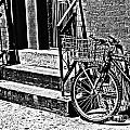 Bike In The Sun Black And White by Miriam Danar