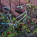 Bike In The Vines by Garry Gay