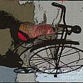 Bike Seat View by Ecinja
