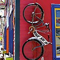 Bike Shop by Fiona Kennard