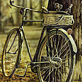 Bike by Tim  Joyner