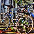 Bike Trek by Michael Thomas