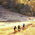 Bikers On Foresthill Divide Trail by Scott Markewitz