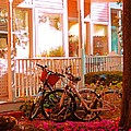 Bikes In The Yard by Desiree Paquette