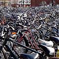 Bikes by Michael Kane
