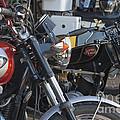 Old Motorbikes by Terri Waters